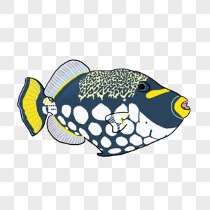 多彩鱼元素图片