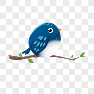 站在树枝上的蓝色小鸟图片