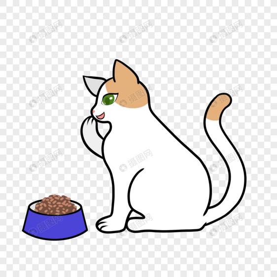 吃饭就开心的猫对着猫粮捂嘴偷笑图片