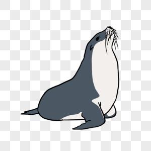 海洋海豹元素图片