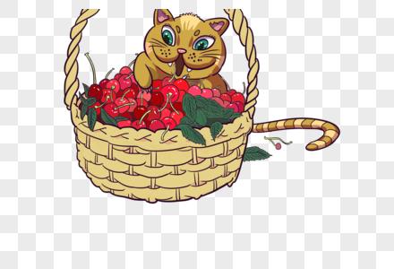 吃樱桃的猫图片