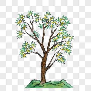 国画写意桂花树图片