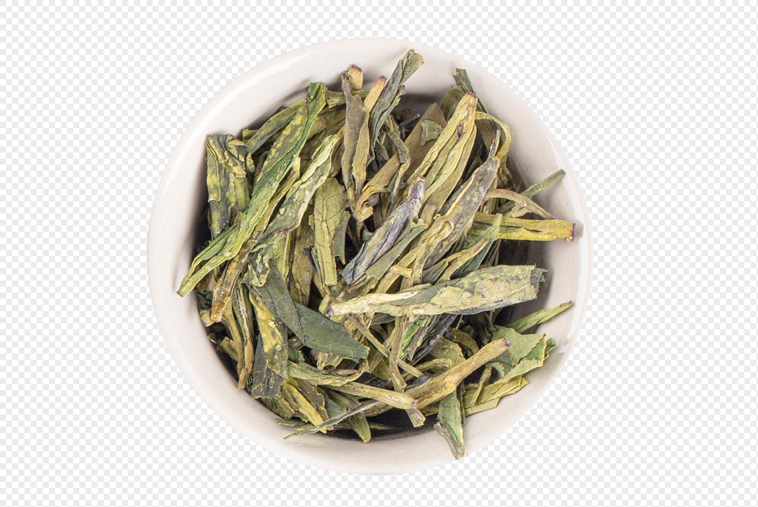 安吉白茶怎么选