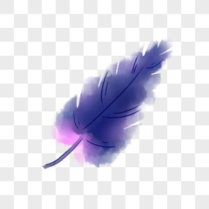 紫色羽毛图片
