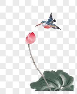 水墨荷花与翠鸟图片