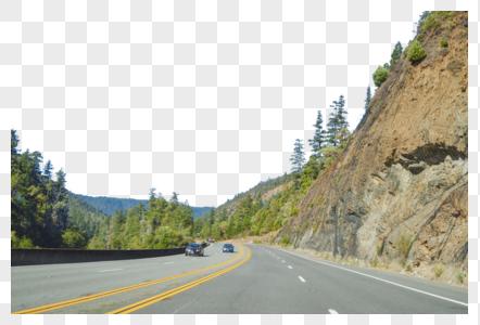 美国一号公路沿途森林图片