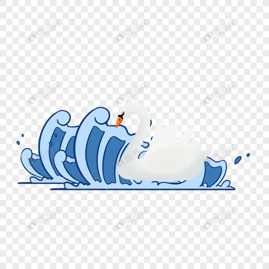 游泳的鸭子图片