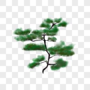 中国风水墨松树插画图片