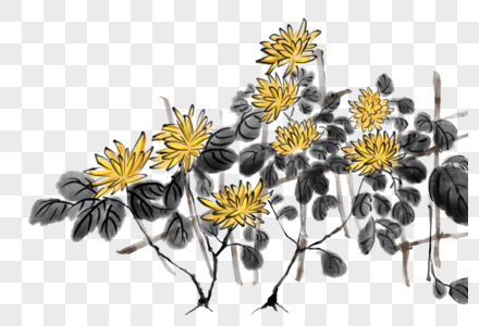 浓墨秋菊图片