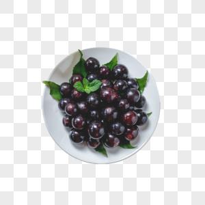 云南夏黑葡萄图片