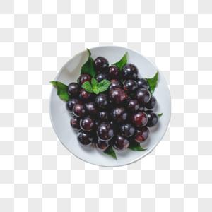 云南黑葡萄图片