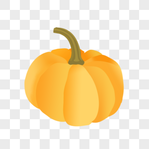 金黄色南瓜图片