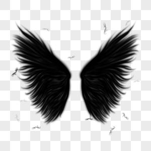 黑色抽象翅膀图片