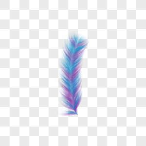 蓝紫花色羽毛图片