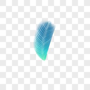 蓝绿色短羽毛图片