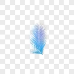 冷色小片羽毛图片