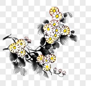 水墨菊花图片