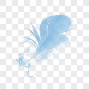 彩色羽毛元素图片