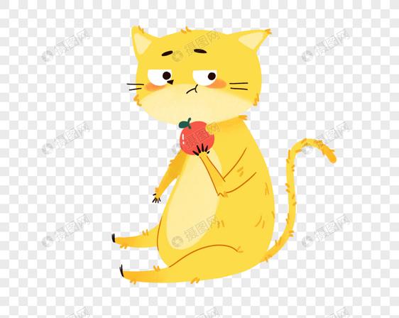 动物可爱橘猫吃苹果图片