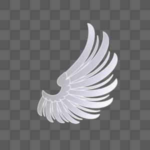 单只白翅膀图片