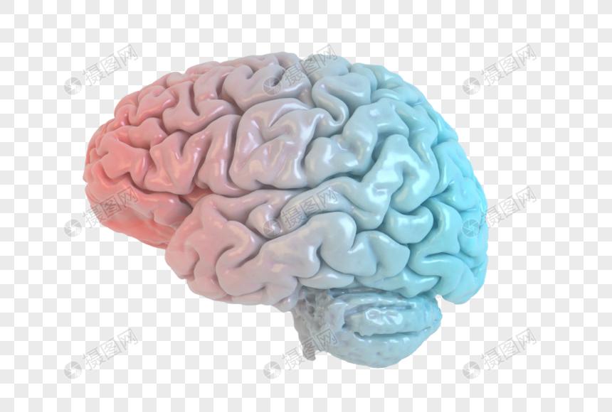 创意大脑空间图片