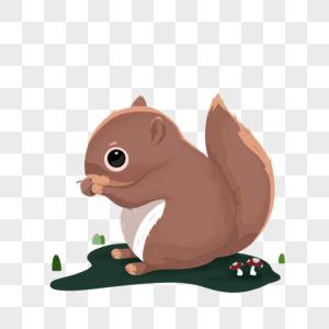 小松鼠图片