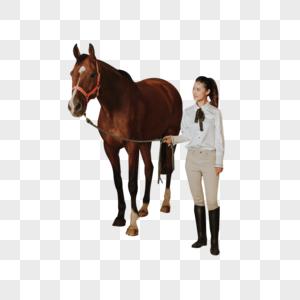 青年女性马厩牵马图片