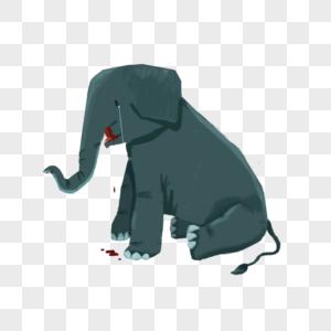 受伤的大象图片