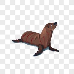 禁止杀戮海豹图片