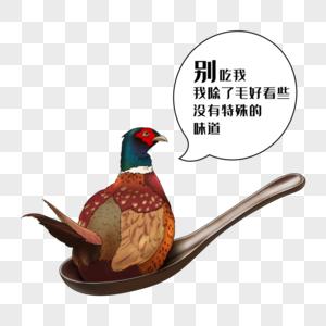 禁食野味野鸡图片