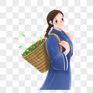 谷雨采茶的女孩图片