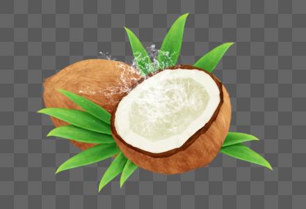 夏日解暑椰子图片