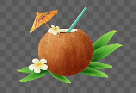 夏日椰子图片