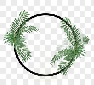绿色热带植物花圆边框图片