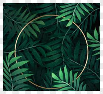 自然金色圆框图片