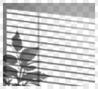创意手绘阳光照射盆栽投影图片