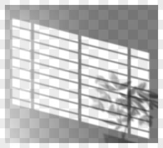 创意手绘阳光照射窗户盆栽投影图片