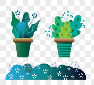 绿植叶子盆栽图片