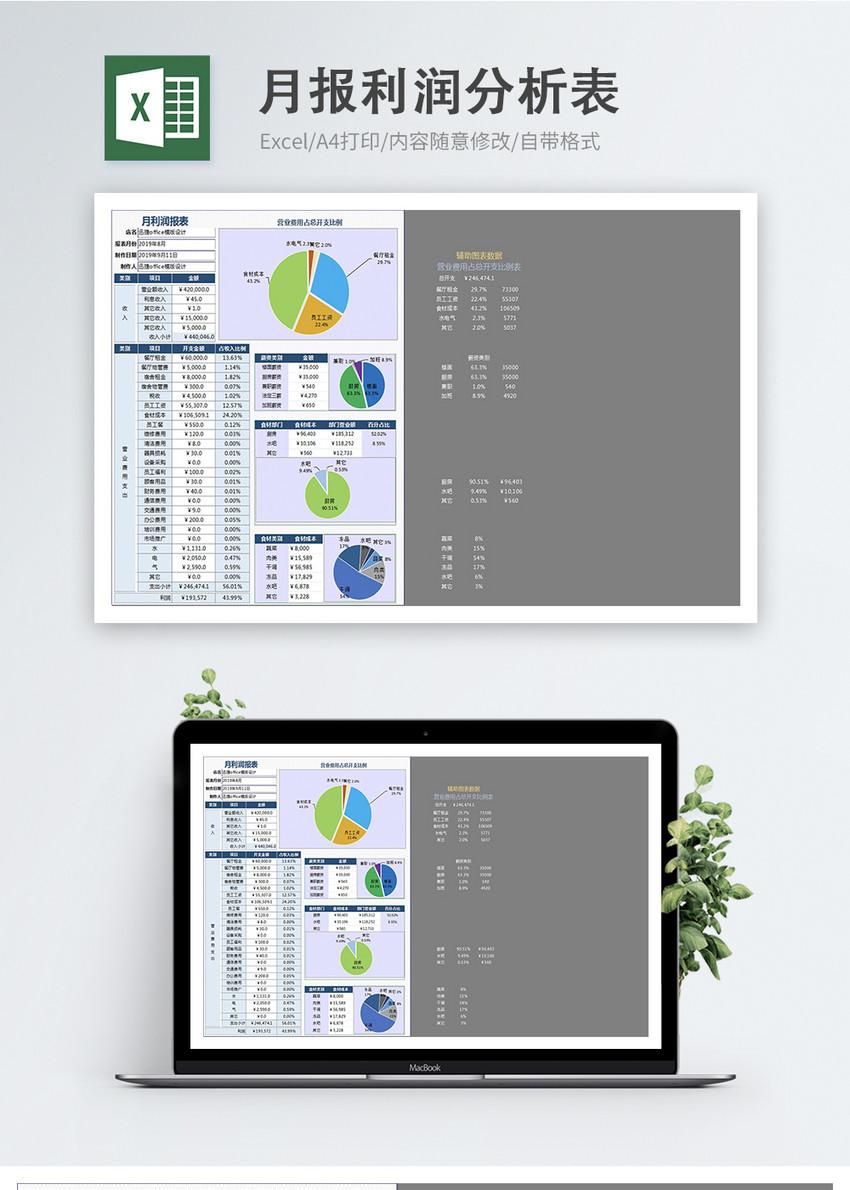 月报利润分析表饼状图excel模板图片