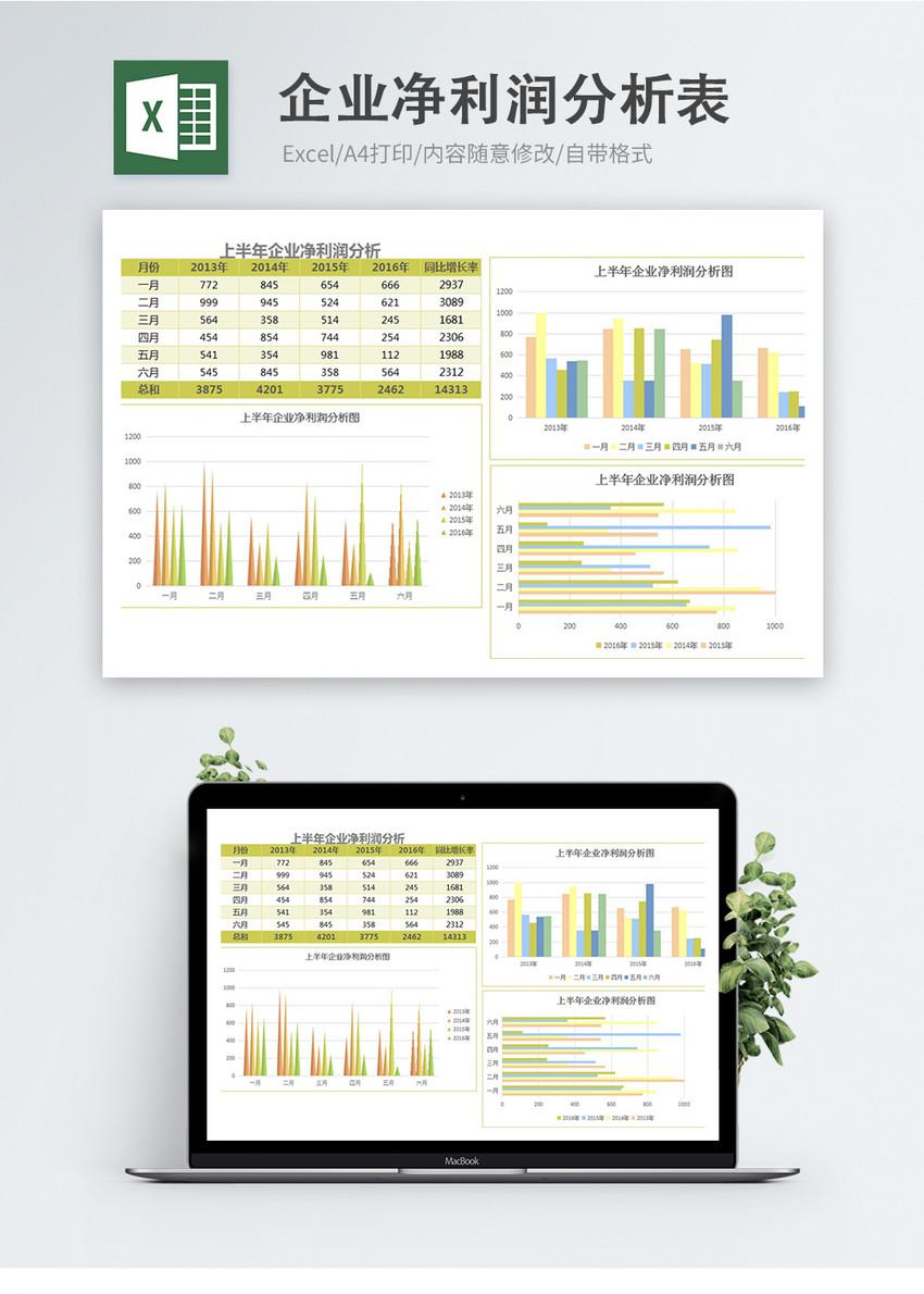企业净利润分析表图片