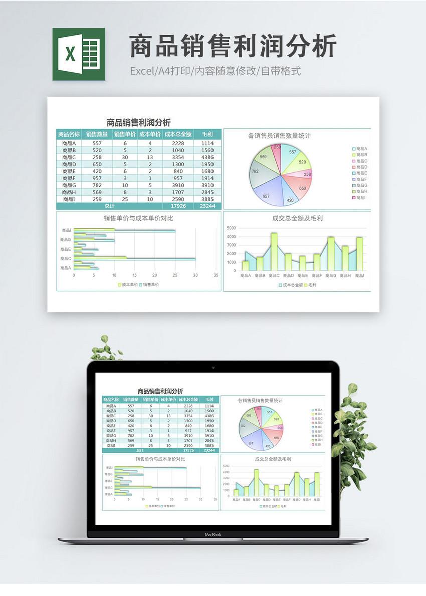 雾面商品销售利润分析excel模板图片