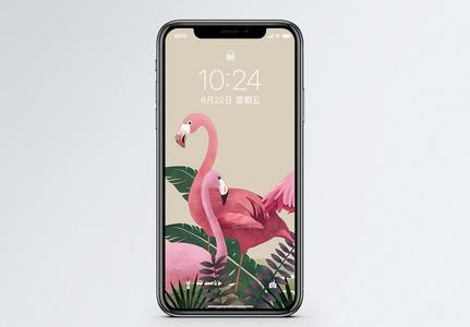 火烈鸟手机屏保图片