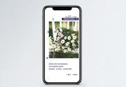 心情语录手机海报配图图片