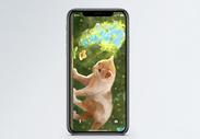 猫与花手机壁纸图片