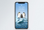 企鹅手机壁纸图片