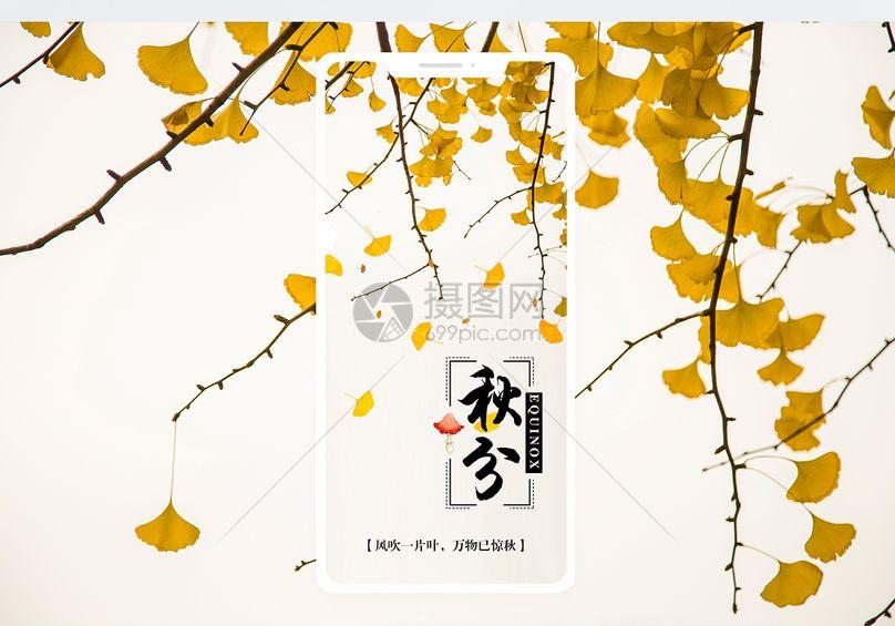 秋分手机海报配图图片