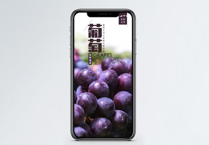 葡萄手机海报配图图片