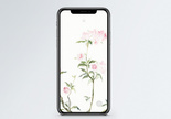 水彩花卉手机壁纸图片