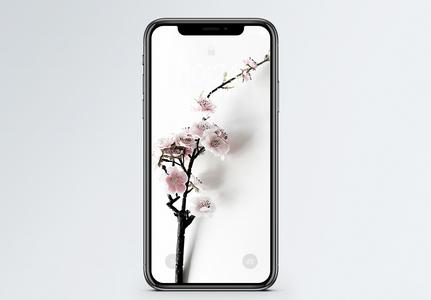 一枝梅花手机壁纸图片