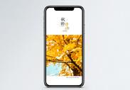 秋的律动手机海报配图图片